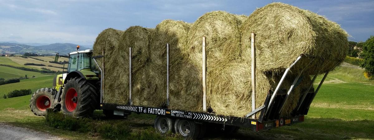 Carico e trasporto delle balle efficienza e sicurezza for Crosetto rimorchi agricoli