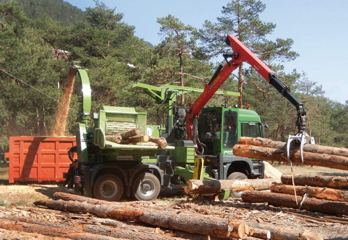 Forestry: types and models for specific mechanization