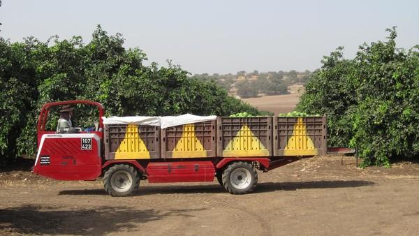 Transporter Darmec Versatilita Ed Efficienza Nella Raccolta